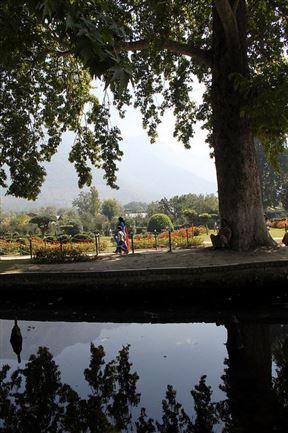 Walking in the Heritage Mughal Garden