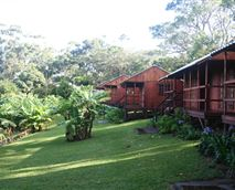 Cabins and lawns
