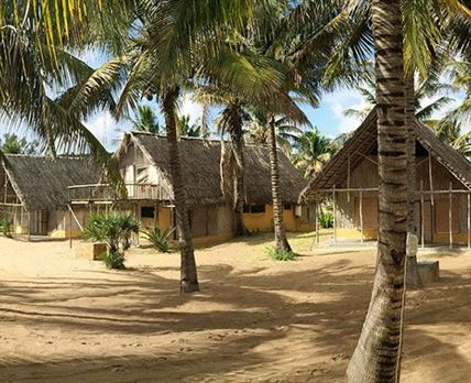 Rooms To Go Palm Grove Bedroom