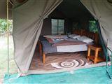 Okavango Delta Tented Camp