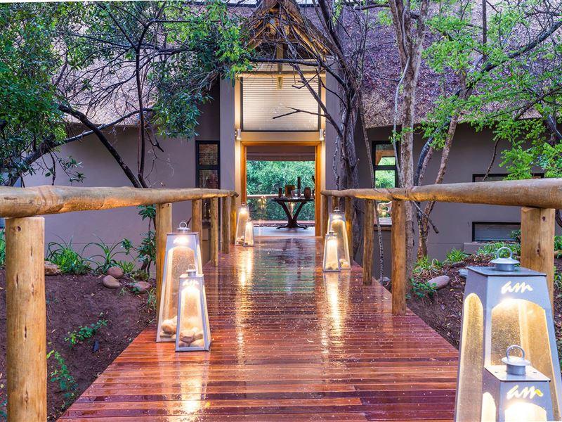 am lodge rh safarinow com