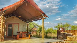 Dinokeng Game Reserve Accommodation From R200 - Book Today