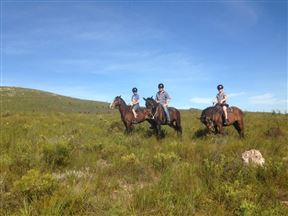 custom made horse riding tours