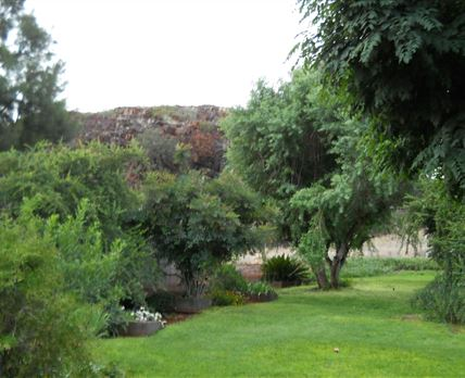 The luscious garden at the main house where dinner and breakfast is served. © Property of Holkrans Lodge