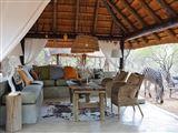 Tusk Bush Lodge & Photographic Safaris