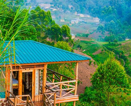 Overlooking the Great Bwindi Forest
