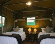 Safari tent interior  © Pilanesberg Backpackers
