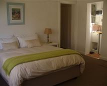 Spacious bedroom with queen size bed and shower and kitchenette en-suite  © copy