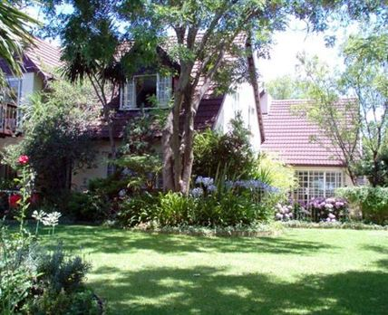 A spacious garden with dappled shade from the pecan nut trees. A sheer delight on a hot day and even in the cool of the evening next to the pool.