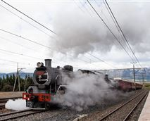 Steam train passing next to the house