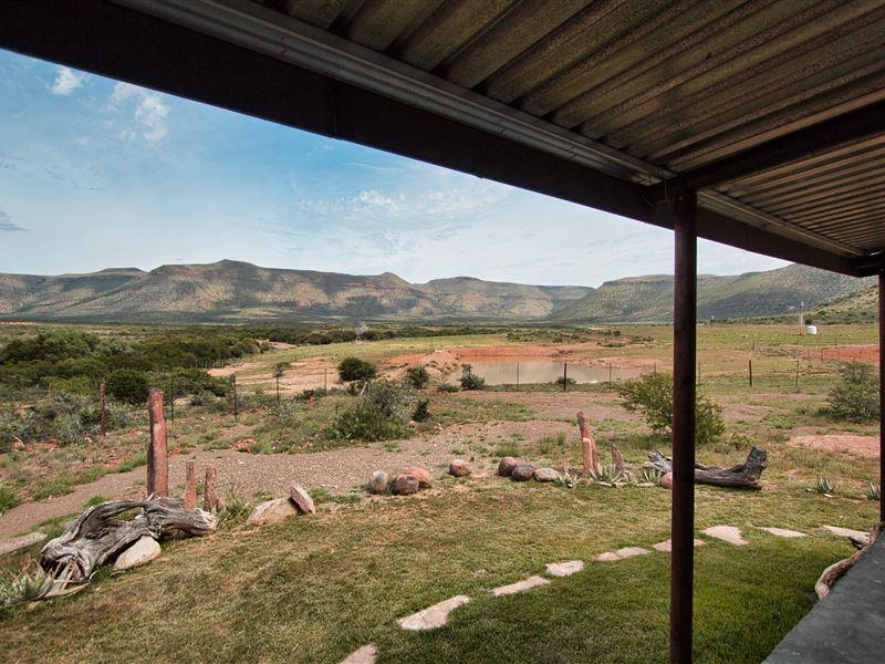 Buffelshoek Dirosie Game Lodge