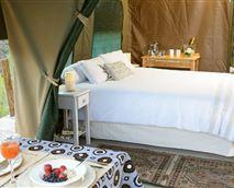 Bush Tent interior