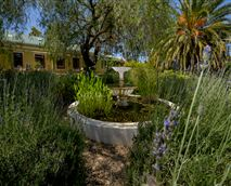 Garden © Darling Lodge Guest House