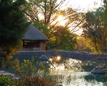 © Copyright reserved to Mmuthlwa Lodge