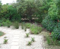 This stunning indigenous garden has a cold shower where youcan cool down or rinse off sandyfeet on your way back fromthe beach!