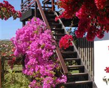 The stairway to the sun deck