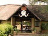 Mpumalanga Safari
