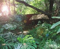 Guests can relax in the tranquil garden.