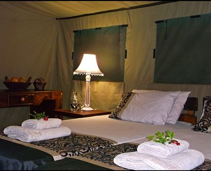 En-suite safari tents with fully equipped kitchen Sleeps 2 guests