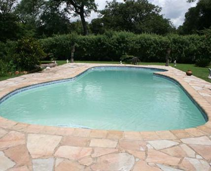 The swimming pool at Casa Munji Lusaka is a good 12 metres in size with lawns and shrubs in its vicinity. Local sculpures in wood , metal and stone form part of this garden's decor<br />