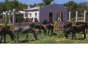 The Donkeys with the Restaurant at the background
