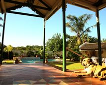 Braai lapa to the right and swimming pool ahead!