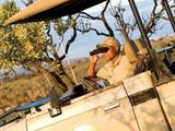 Magalies Meander Safari