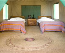 Tent with pure cotton sheets, big towels, and a kikoi to use on the beach.