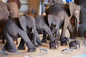 Wooden elephant of all sizes