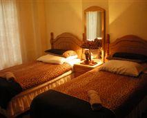 Cheetah Room