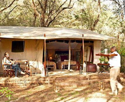 Tents at Nairobi Tented Camp are spacious and comfortable, giving you an entirely new camping experience.