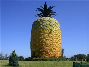 A famous landmark in Bathurst.