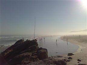 Fishing at Maitlands