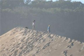 Maitland Dunes