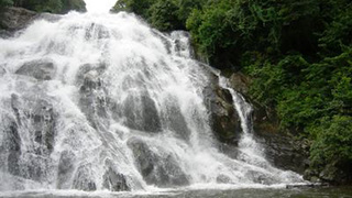 Things to do in Tzaneen