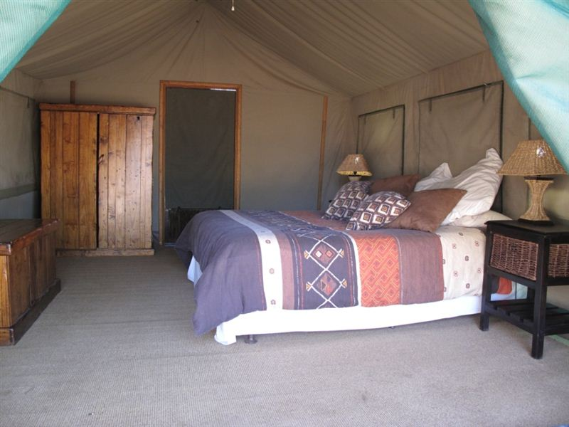 MOTSOMI LODGE & TENT CAMP - Prices & Reviews (Thabazimbi ...