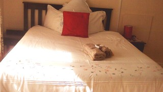 Twin Lodge | Mthatha Accommodation