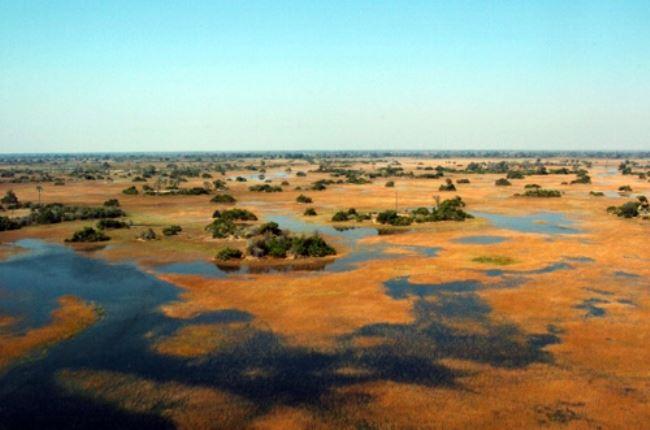 Okavango Delta Model.PageTitle