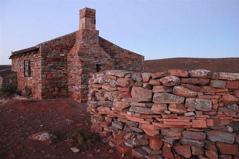 Saffraan at Middelfontein Farm near Sutherland