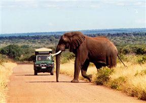 South Kruger Park Accommodation