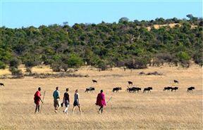 Maasai Mara National Reserve Accommodation