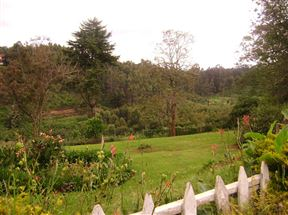 Limuru Accommodation