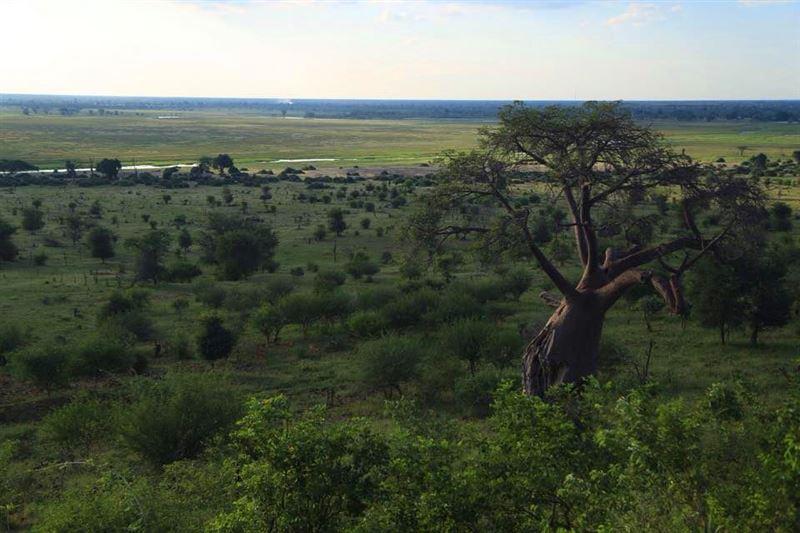 View from Ngoma Safari Lodge