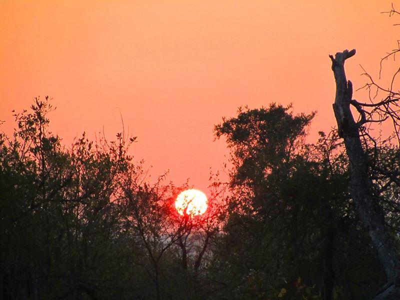 Sunrise Malelane Gate, Kruger National Park