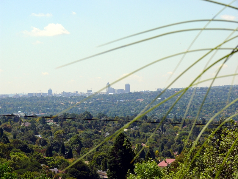 Randpark Ridge Model.PageTitle