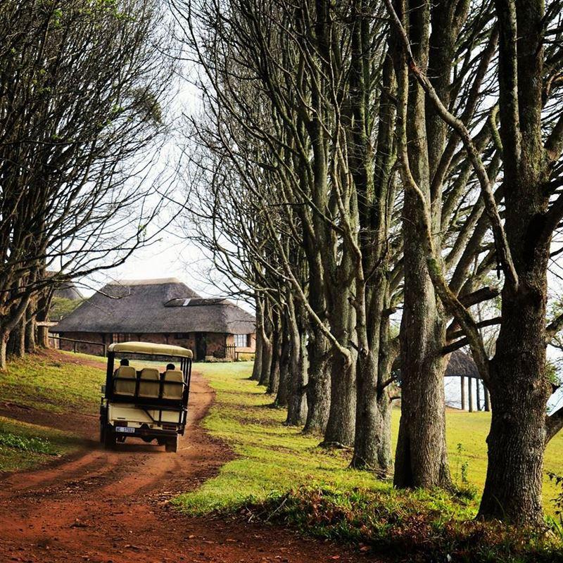 Bothas Hill Accommodation