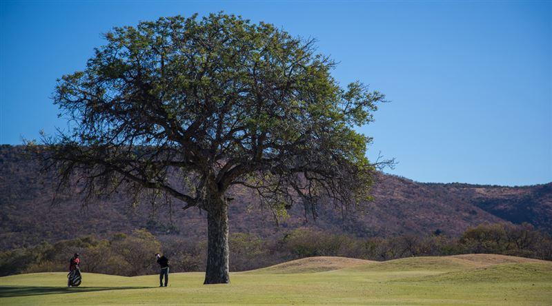 Euphoria Golf Estate, Waterberg