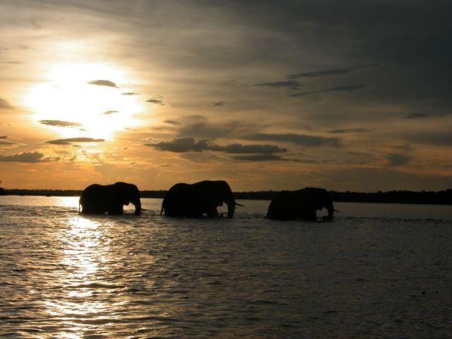 Lower Zambezi Region Accommodation