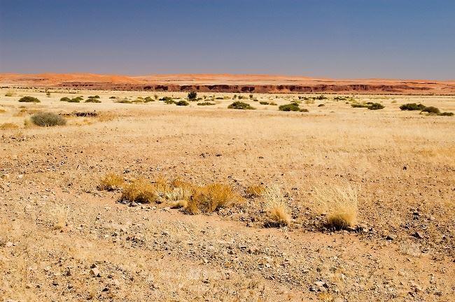 Namib Region Accommodation