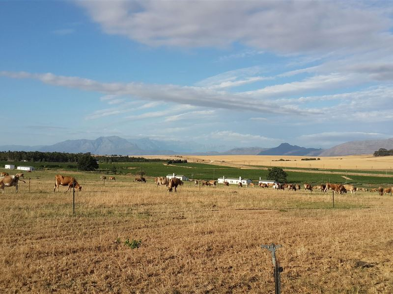 Swartland Accommodation